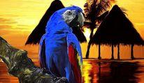Natur, Tiere, Malerei, Papagei