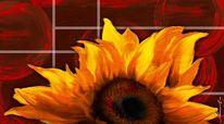 Sonnenblumen, Gelb, Blumen, Dezember