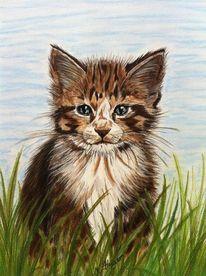 Maikätzchen, Katze, Pastellmalerei, Katzenzeichnung