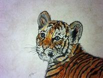 Tigerbaby, Tigerzeichnung, Tierzeichnung, Pastellmalerei