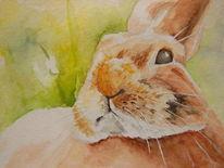Tiere, Hase, Aquarellmalerei, Kaninchen