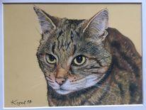 Katze, Kreide, Erinnerung, Haustier
