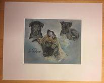 Tierportrait, Kegel, Naturalistisch, Hund