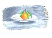 Orange, Früchte, Frisch, Zeichnungen