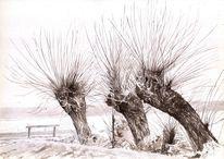 Weiden, Kopfweide, Baum, Schnee