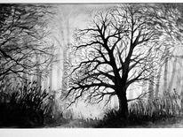 Landschaft, Mystik, Weit, Lichtung