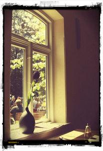 Sonne, Fenster, Stillleben, Fotografie