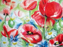 Blumen, Wiese, Mohn, Rot