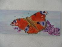 Schmetterling, Besinnlichkeit, Frühling, Pfauenauge