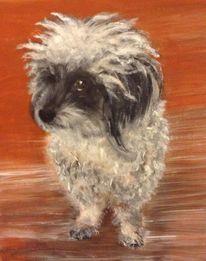 Portrait, Hund, Gemälde, Malerei
