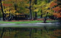 Herbst, See, Spiegelung, Herbstlaub