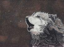 Aquarellfarbe pastell, Mischtechnik, Nacht, Wolf