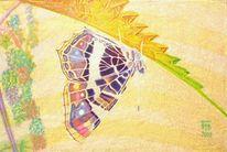 Harmonie, Sommer, Sonnenlicht, Tiere