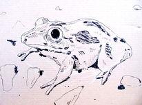 Schwarz, Kröte, Zeichnung, Zeichnungen