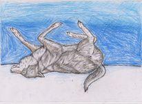 Buntstifte, Wolf, Zeichnung, Aquarellmalerei