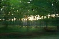 Landschaft, Bewegung, Abstrakt, Fotografie