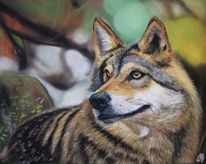 Wolf, Tiere, Herbst, Wald