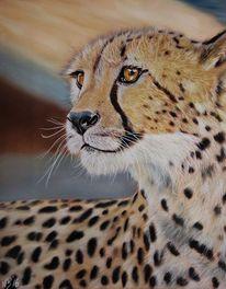 Gepard, Wildtier, Pastellmalerei, Zoo