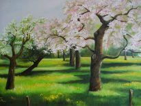 Obstbaum, Blüte, Wiese, Frühling