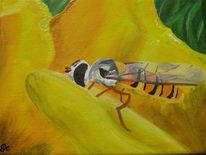Insekten, Schwebefliege, Blüte, Malerei