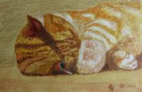 Tiere, Katze, Aquarellmalerei, Aquarell