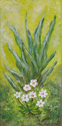 Grün, Blüte, Pflanzen, Blumen