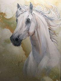 Weiß, Pferde, Malerei