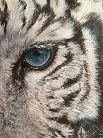 Tiger, Augen, Weiß, Malerei