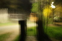 Fotografie, Welt