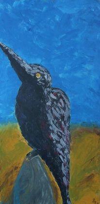 Blau, Rabe, Natur, Vogel