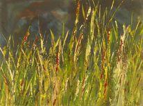 Schilf, Natur, Gras, Gewitter