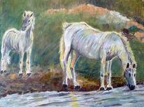 Schimmel, Pferde, Fohlen, Malerei