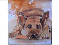 Hund, Aquarellmalerei, Tiere, Treu