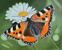 Gänseblümchen, Schmetterling, Fotorealistische malerei, Fuchs