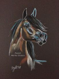 Pferde, Zeichnung, Kreide, Portrait