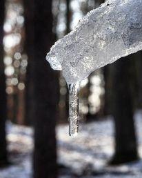 Natur, Eis, Fotografie