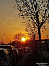 Sonnenuntergang, Sonne, Fotografie