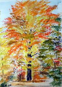 Goldgelb, Baum, Herbst, Aquarell