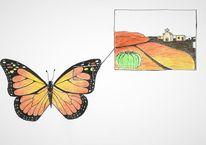 Monarchfalter, Navigation, Orientierung, Schmetterling