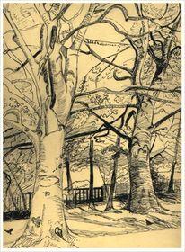Bäume, Natur, Zeichnung, Zeichnungen