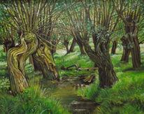 Weiden, Natur, Wasser, Malerei