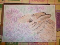 Kaninchien, Blumen, Zeichnungen, Tiere