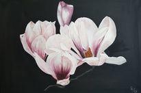 Magnolien, Blumen, Äste, Rosa