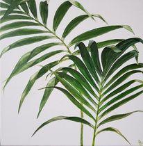 Palmen, Blätter, Malen, Botanik