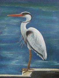 Vogel, Wasser, Fischreiher, Malerei