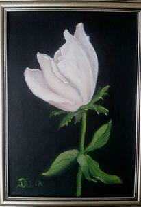 Blumen, Schwarz weiß, Ölmalerei, Weiß