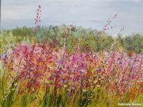 Landschaft, Blumengarten, Wiese, Blüte