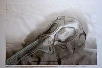 Zeichnung, Stillleben, Delfin, Abstrakt