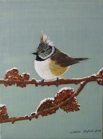 Tiere, Haubenmeise, Vogel, Malerei