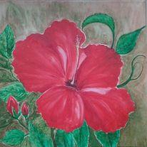 Knospe, Blüte, Hibiskus, Malerei
